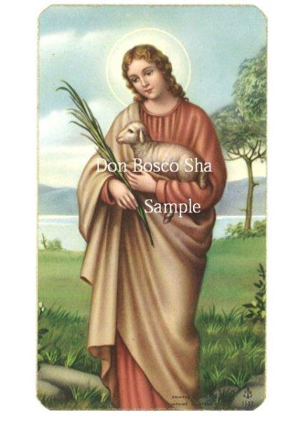 画像1: イタリア製 ご絵 聖アグネス (1527) (1)