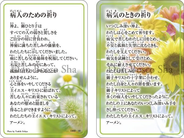 画像1: 祈りカード40 病人のための祈り/病気のときの祈り (1)